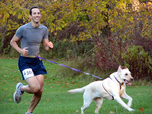 Pet-Friendly Exercise Routines